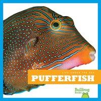 Pufferfish - Mari Schuh