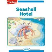Seashell Hotel - Nancy Cote