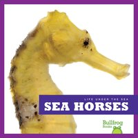 Sea Horses - Cari Meister