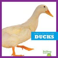 Ducks - Wendy Strobel Dieker