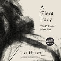 A Silent Fury: The El Bordo Mine Fire - Yuri Herrera