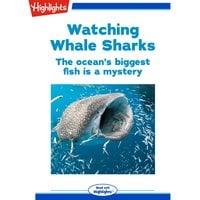 Watching Whale Sharks - Heidi Poelman
