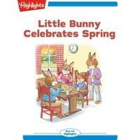 Little Bunny Celebrates Spring - Eileen Spinelli
