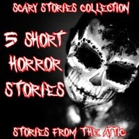 Scary Stories Collection - Stories From The Attic