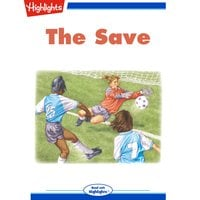 The Save - Steve Garagiola