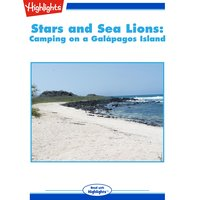 Stars and Sea Lions Camping on a Galapagos Island - Highlights for Children
