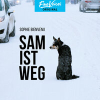 Sam ist weg - Sophie Bienvenu