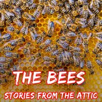 The Bees - Stories From The Attic