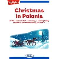 Christmas in Polonia - June Groshek Czarnezki