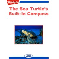 The Sea Turtle's Built-In Compass - Sudipta Bardhan