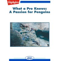 What a Pro Knows A Passion for Penguins - Mary Paulson