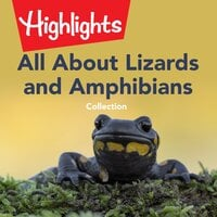 All About Lizards and Amphibians Collection - Highlights for Children