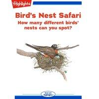 Bird's Nest Safari - Judyann Grant
