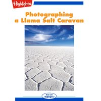 Photographing a Llama Salt Caravan - Victor Englebert