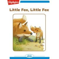 Little Fox Little Fox - Nancy White Carlstrom
