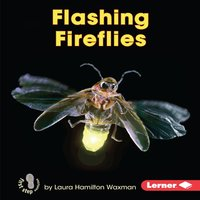 Flashing Fireflies - Laura Hamilton Waxman