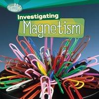 Investigating Magnetism - Sally M. Walker