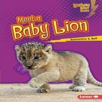 Meet a Baby Lion - Samantha S. Bell