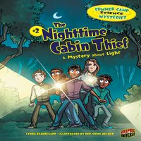 The Nighttime Cabin Thief A Mystery about Light - Lynda Beauregard