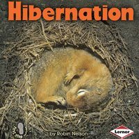 Hibernation - Robin Nelson
