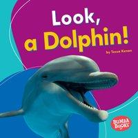 Look, a Dolphin! - Tessa Kenan