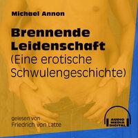 Brennende Leidenschaft - Eine erotische Schwulengeschichte - Michael Annon