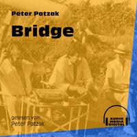 Bridge - Peter Patzak