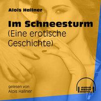 Im Schneesturm - Eine erotische Geschichte - Alois Hallner