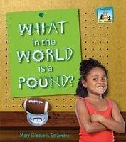 What in the World is a Pound? - Mary Elizabeth Salzmann
