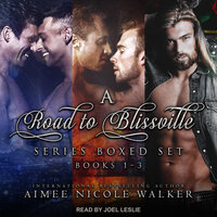 A Road to Blissville Series Boxed Set - Aimee Nicole Walker