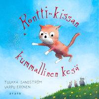 Rontti-kissan kummallinen kesä - Tuukka Sandström