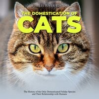 The Domestication of Cats: The History of the Only Domesticated Felidae Species and Their Relationship with Humans