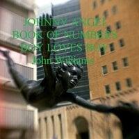 Johnny Angel Book of Numbers Boy loves Boy - John Williams