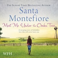 Meet Me Under the Ombu Tree - Santa Montefiore