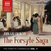 The Forsyte Chronicles, Vol. 1: The Forsyte Saga - John Galsworthy