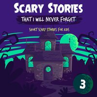 Scary Stories That I Will Never Forget: Short Scary Stories for Kids - Book 3 - Ken T Seth