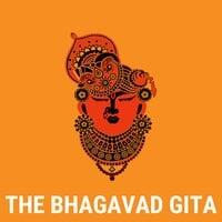 Bhagavad Gita - Krishna Yadav