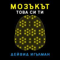 Мозъкът, това си ти - Дейвид Игълман