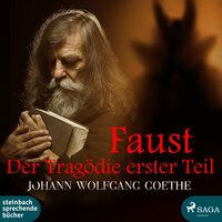 Faust - Der Tragödie erster Teil - Johann Wolfgang von Goethe