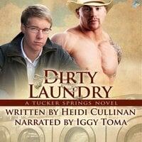 Dirty Laundry: A Tucker Springs Novel