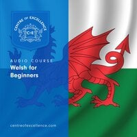 Welsh for Beginners - Centre of Excellence