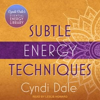 Subtle Energy Techniques - Cyndi Dale