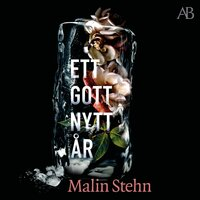 Ett gott nytt år - Malin Stehn