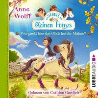 Die Schule der kleinen Ponys, Teil 3: Wer packt hier das Glück bei der Mähne?