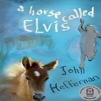 A Horse Called Elvis - John Heffernan