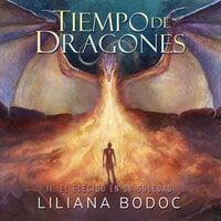 Tiempo de Dragones 2: El Elegido en su soledad