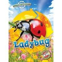 Ladybug - Elizabeth Neuenfeldt