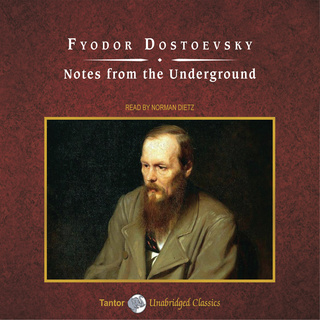 the double dostoevsky audiobook