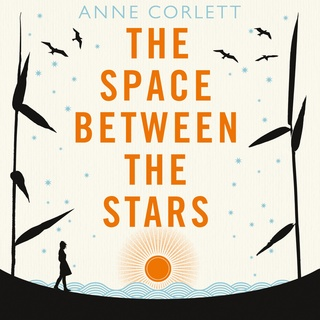 The Space Between the Stars - Anne Corlett
