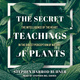 The Secret Teachings of Plants: The Intelligence of the Heart in the Direct Perception of Nature - Stephen Harrod Buhner